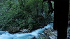 Timelapse - Whitewater stretch through the forest Stock Footage