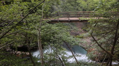 Timelapse - Jungle-like nature. Bridge over the the waterfall Stock Footage