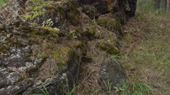 Panorama of the rock Stock Footage