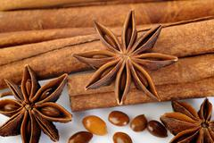 cinnamon stick and star anise spice - stock photo