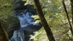 D'alton falls overland track Stock Footage