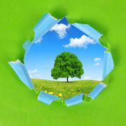 The frame of the green paper. - stock photo