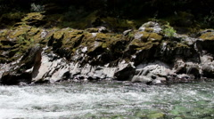 North Fork American River Flow Across Frame Stock Footage