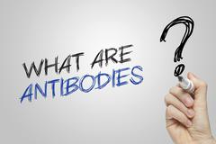 Hand writing what are antibodies Stock Photos