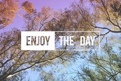 Enjoy the day quote concept tree background Stock Photos