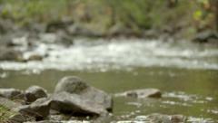 Virginia Mountain Stream Slo-Mo with Camera Move Stock Footage