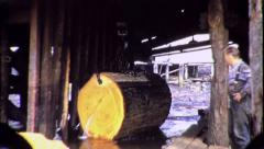 Old Growth Logging Industry Sawmill 1940s Vintage Film Archival Footage 8079r Stock Footage