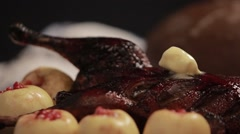 Duck in the oven Stock Footage