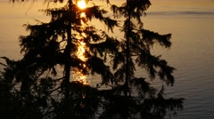 English Bay and West Vancouver from Prospect Point Stock Footage
