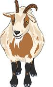 vector hilarious funny cartoon spotted goat with horns - stock illustration