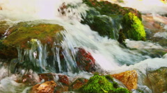 Rapids with green moss in the forest river Stock Footage