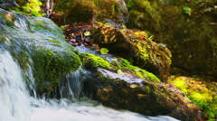 Big stones with free moss lies in a forest river - stock footage