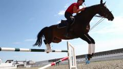 horse jumps over barrier - stock footage