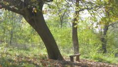 Resting place on Kraljevica hill near Serbian city of Zajecar 4K 3840X2160 UH Stock Footage