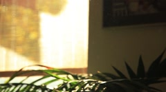 Sunset in room full of light dust particles Stock Footage
