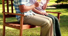 Couple relaxing in the park with glass of wine - stock footage