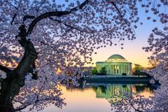 Washington DC Springtime - stock photo