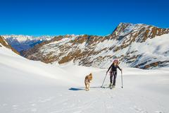 Girl makes ski mountaineering with dog. Stock Photos