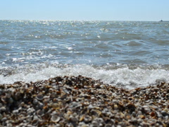 Sea beach. Related clips are in my portfolio in 1920x1080. - stock footage