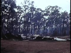 BUSHFIRE AND BURNT HOUSE (1983) Stock Footage