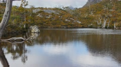Wombat pool cradle mountain Stock Footage