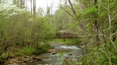 Bridge over river mountain spring dogwood blooms Stock Footage