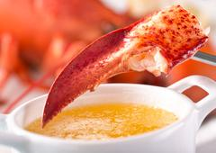 Lobster Claw with Melted Butter - stock photo