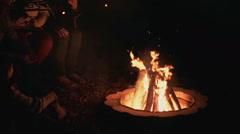 Friends Around Campfire Stock Footage