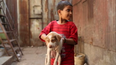 Portrait of Indian boy on a street in Mumbai holding a puppy. Stock Footage