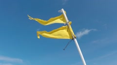 Double yellow flag indicating medium hazard at beach - stock footage