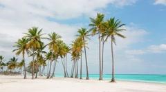 Palm beach White sand blue lagoon palms blue sea Stock Footage