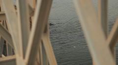 Boat floating under a bridge in Sri Lanka Stock Footage
