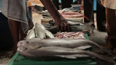 Selling fish in Sri Lanka Stock Footage