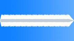 Mitsubishi Evoloution Engine Idle 01 Sound Effect