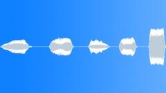 Cartoon Melodic Chirps Sound Effect