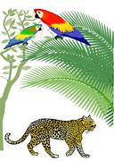Parrot and Jaguar - stock illustration