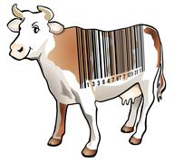 Scan cow Stock Illustration