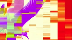 Vj Loops Birds In Black and Colored Backgrounds Stock Footage
