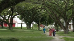 Pan Shot of Female Students Walking on USM Campus in Between Big Trees Stock Footage