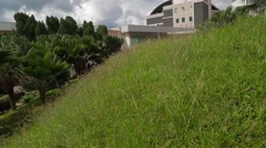Tilting Shot from Green Grass to Penang's Blue Cloudy Sky in USM Stock Footage