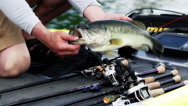 Stock Video Footage of Fisherman holding 5lb Bass