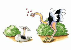 Ostrich with young - stock illustration