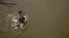 Stock Video Footage of Duck hunter and Dog aerial
