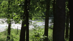 Stock Video Footage of River peaceful wooded foreground