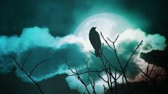 Big moon and crow - stock footage