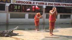 Show at Crocodile Farm in Samut Prakan Province, Thailand Stock Footage