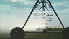 Automated Farming Irrigation Sprinklers System in Operation onField - stock footage