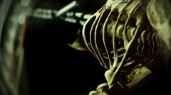 Hanging skeleton below Stock Footage