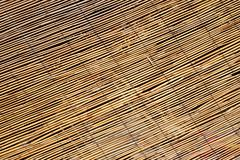 abstract background of large bamboo canes entwined with each other - stock photo