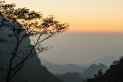 Misty sunset dawn with sunrays over the rainforest. - stock photo